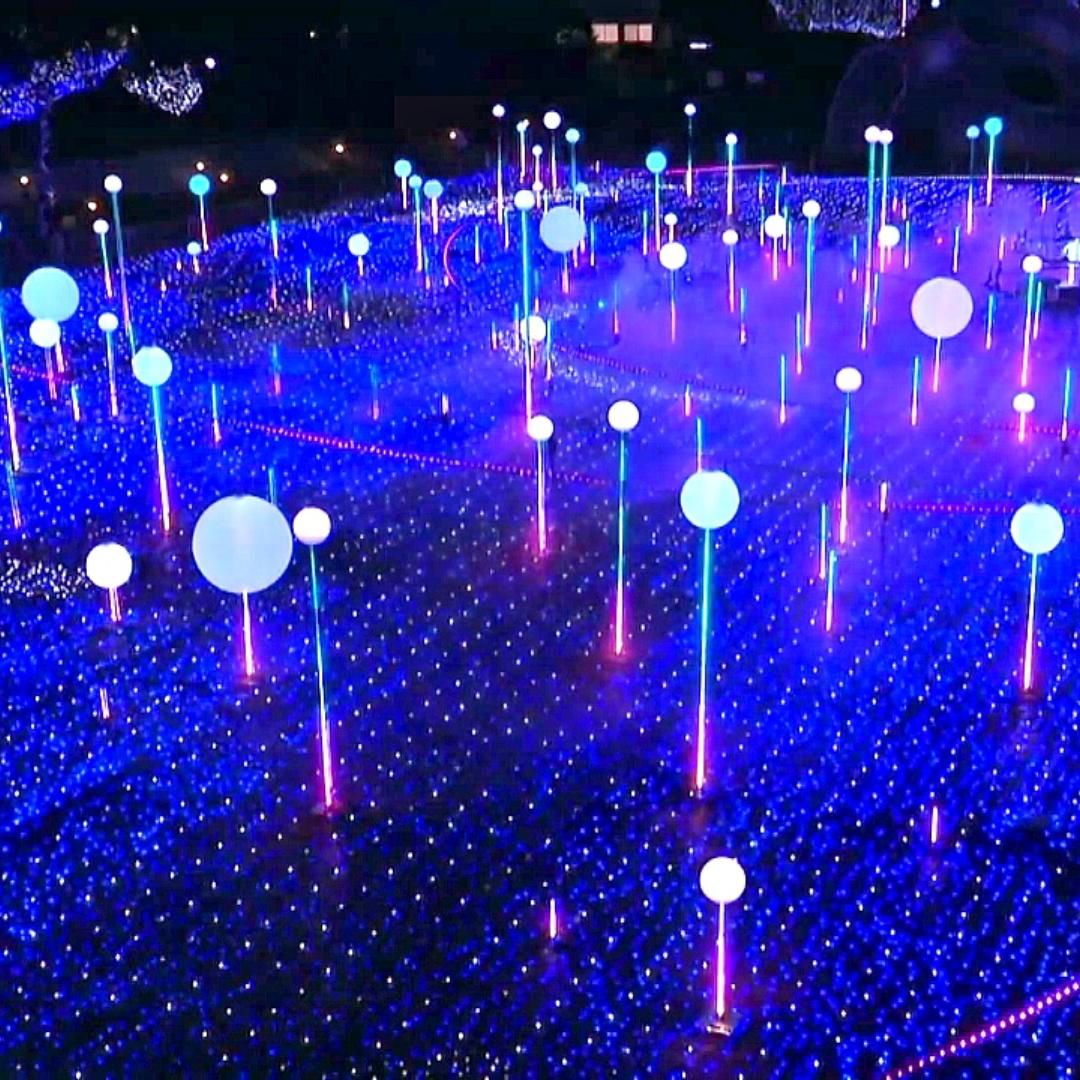 Токио украсила праздничная иллюминация