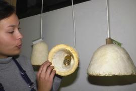 Абажуры из грибов создают в компании по выращиванию вёшенок