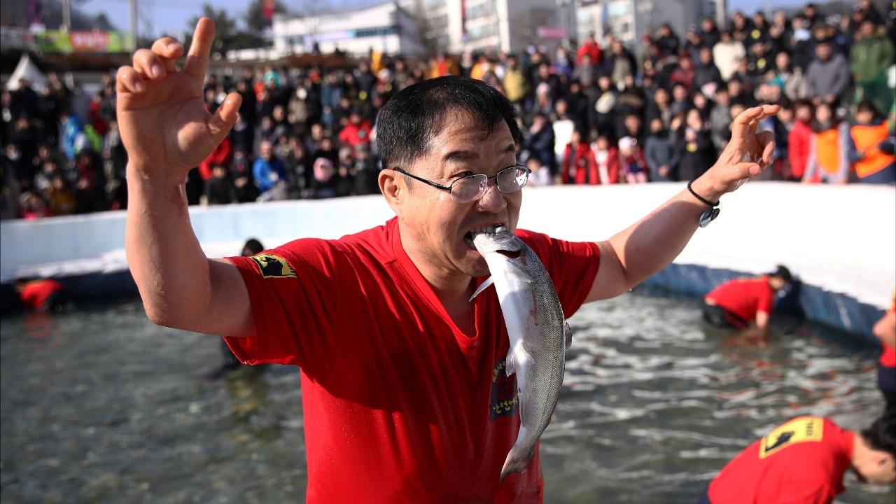 На фестивале рыбной ловли тысячи корейцев и туристов ловят форель