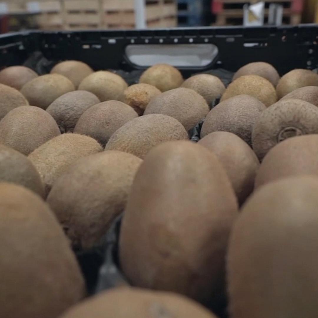 Зачем магазин в Берлине продаёт просроченную еду