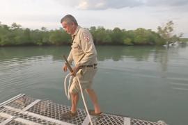 Австралиец уже 40 лет с риском для жизни ловит крокодилов