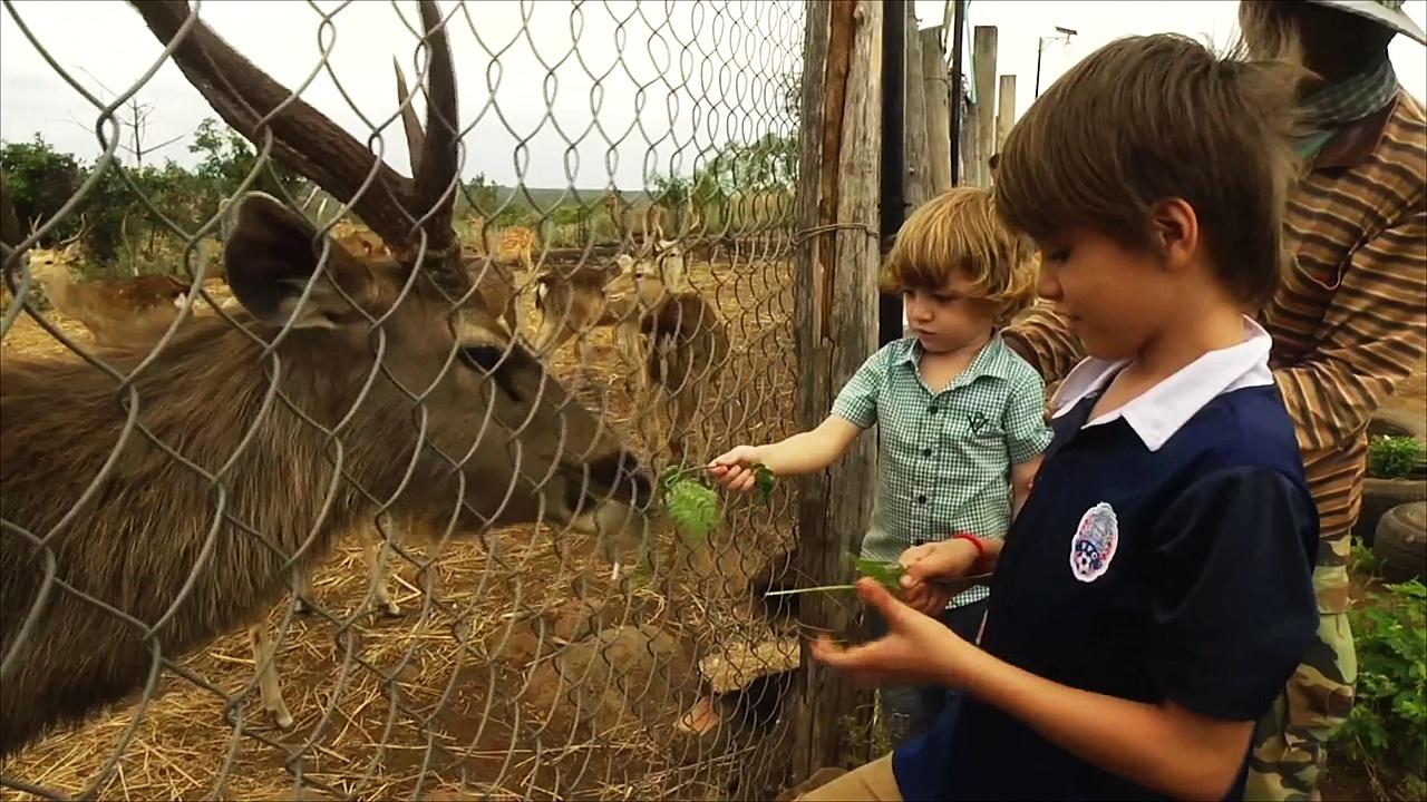 Камбоджийский зоопарк спасает диких животных от вымирания