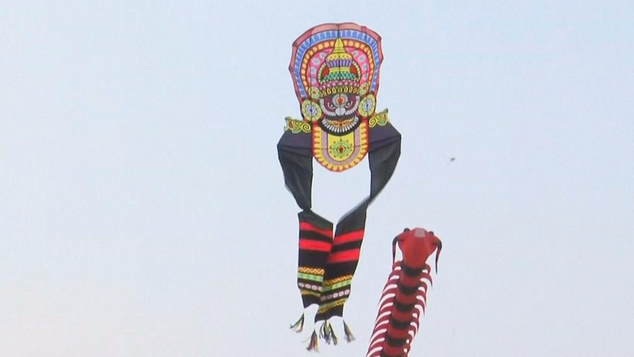 Медведи и портрет Майкла Джексона взмыли в небо над Хайдарабадом
