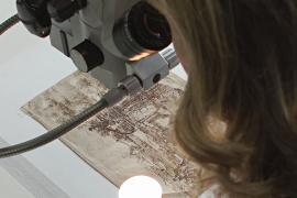 Учёные анализируют один из самых ранних рисунков Леонардо да Винчи