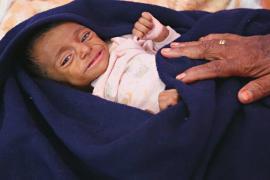 14 британских организаций призвали решить гуманитарный кризис в Йемене