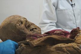 Эквадорская мумия XVI века поможет узнать, чем болели в старину