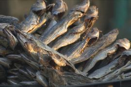В индийском Кашмире пережить зиму помогает вяленая рыба