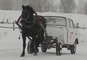 Автомобиль на одной лошадиной силе построил российский учитель