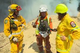 Пожары в Новой Зеландии – сильнейшие за 60 лет