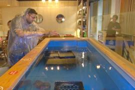 Порыбачить и тут же съесть улов можно в нью-йоркском ресторане
