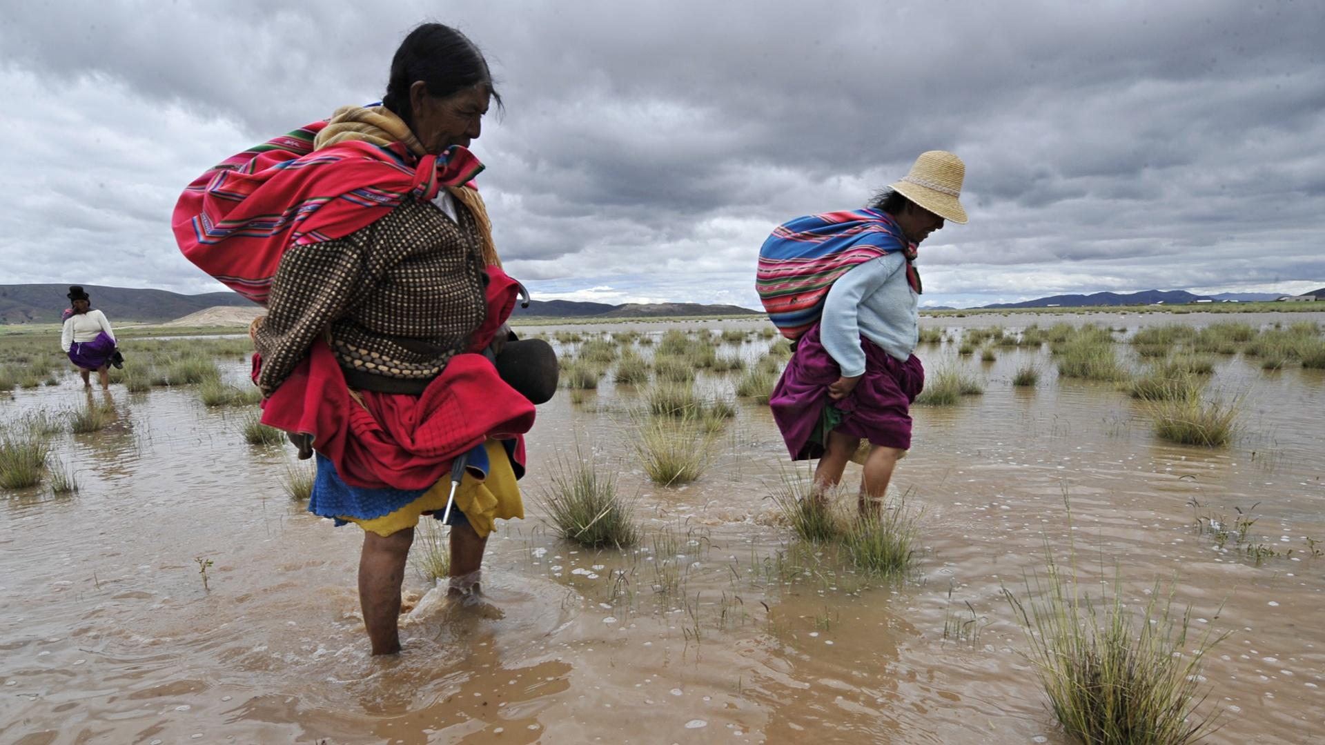 Наводнения в Боливии и Перу уносят жизни
