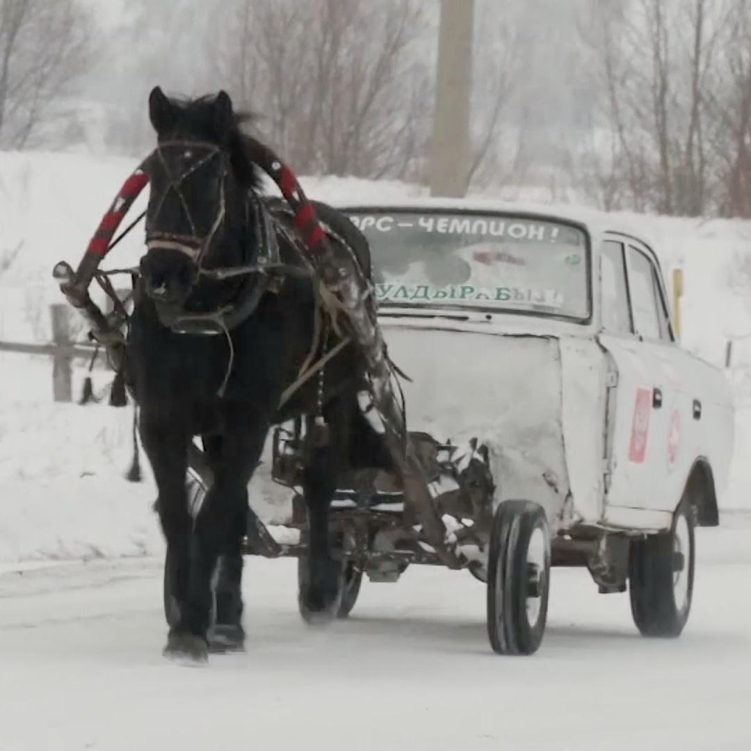 Как выглядит москвич на одной лошадиной тяге
