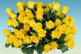 5 символов, скрытых в букете из желтых цветов