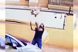 Мужчина спас собаку, упавшую с девятого этажа