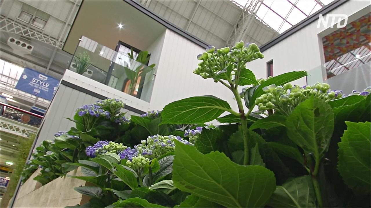 Модульные дома и минимум пластика: в Лондоне проходит выставка «Идеальный дом»