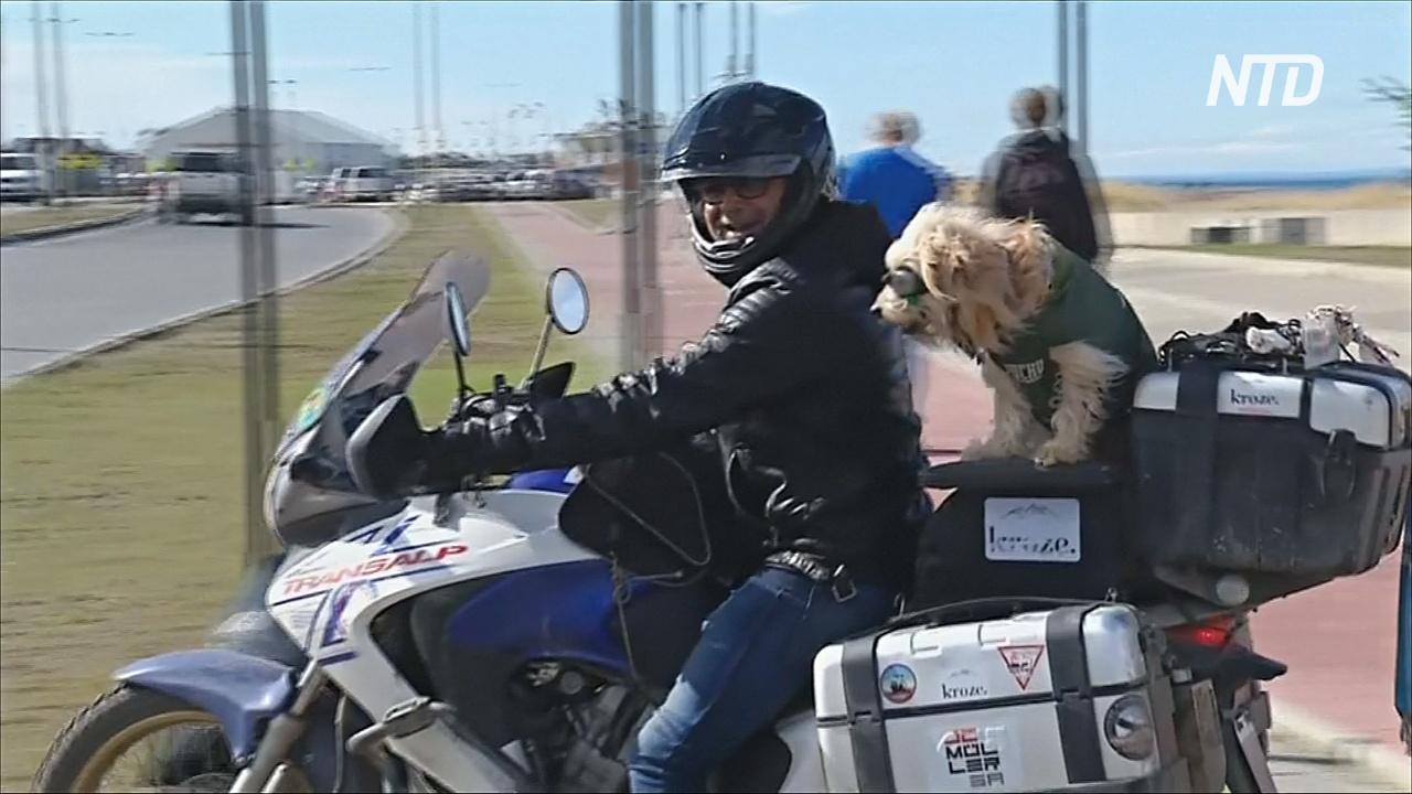 Аргентинец и собака проехали тысячи километров на мотоцикле