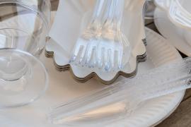 Евросоюз запретит пластиковые вилки и тарелки к 2021 году