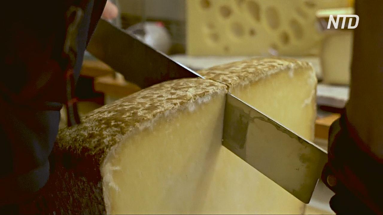 Французы встали на защиту сыра из сырого молока