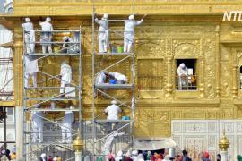 «Золотой храм» в Индии очищают волонтёры из Великобритании