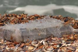 На пляжи Румынии вымыло 150 кг кокаина
