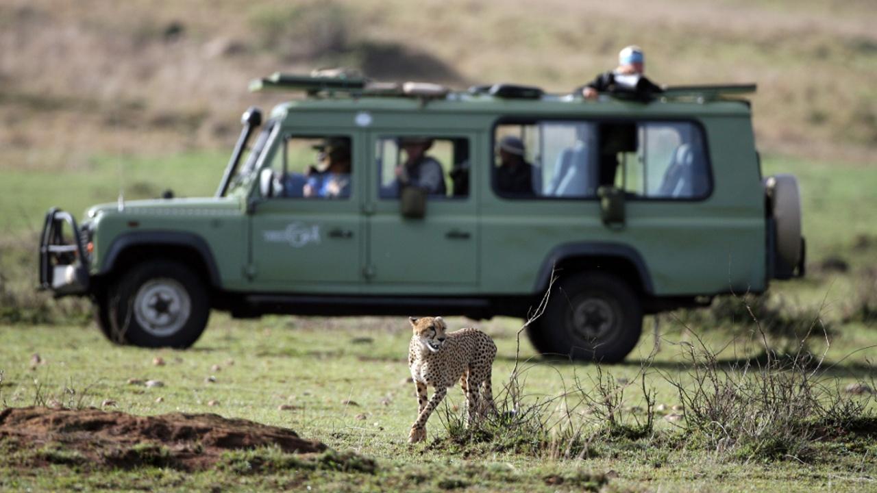 В Уганде освободили туристку из США, похищенную во время сафари