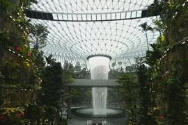 В аэропорту Сингапура открыли самый высокий в мире крытый водопад