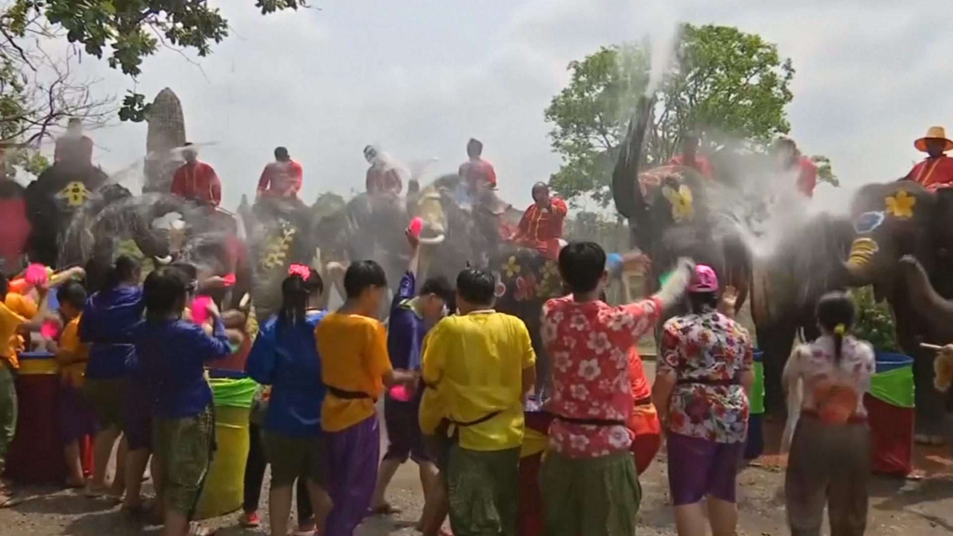 Слоны и люди устроили водную битву в честь тайского Нового года