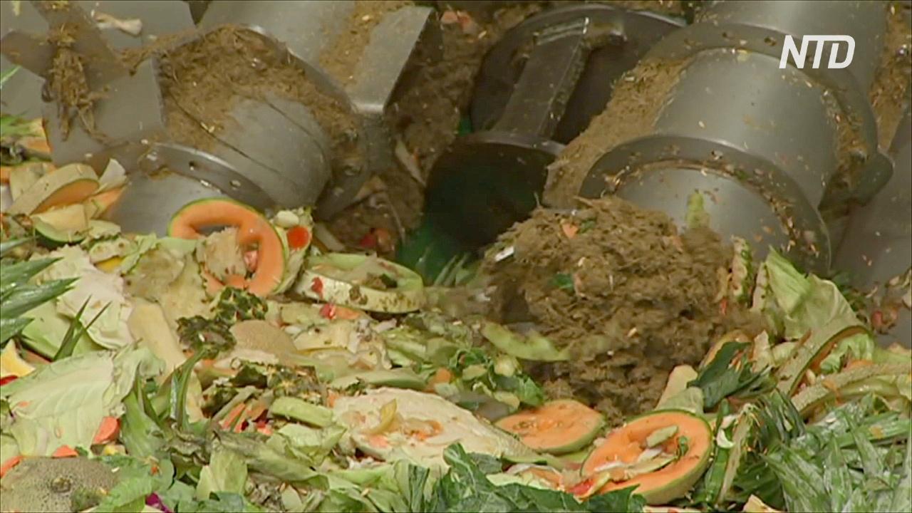 На заводе в Австралии пищевые отходы превращают в биогаз