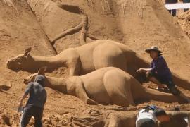 Боливийцы сделали песчаные скульптуры героев сказания о Ноевом ковчеге