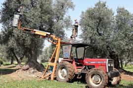 Фермеры Испании надеются на помощь нового правительства