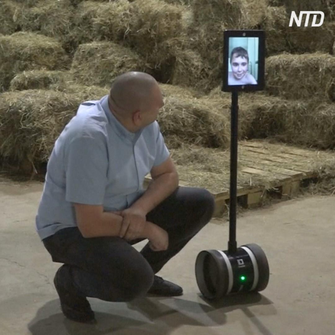 Робот снимает животных в зоопарке и показывает видео в детской больнице