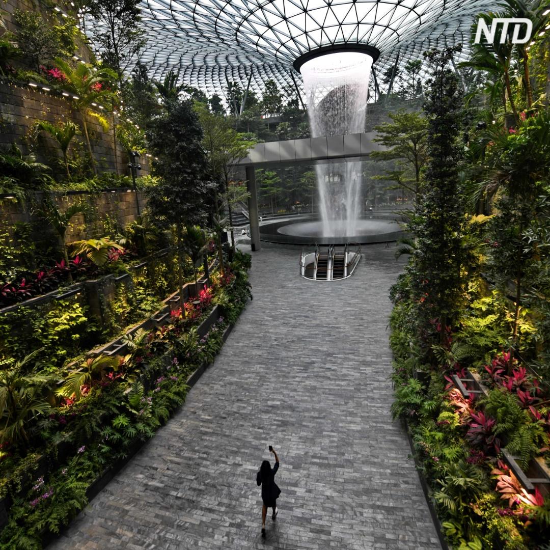 Крупнейший в мире крытый водопад появился в аэропорту Сингапура