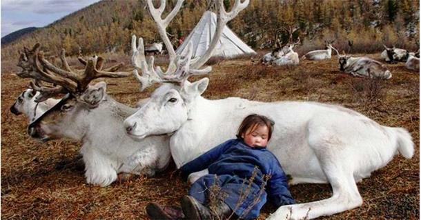 Фотограф попал в затерянное в горах Монголии племя. Фото просто восхитительны!