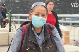 В Мехико ввели режим экологической ЧС из-за пожаров