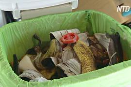 В Тасмании органические отходы больше не будут везти на свалки