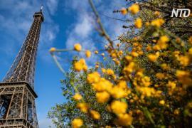 На Эйфелеву башню привели 1300 детей в честь юбилея