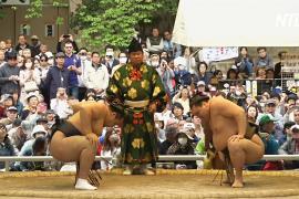 Поклонники сумо призывают Трампа посмотреть схватку в Японии, сидя на полу
