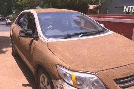 Индианка покрыла своё авто коровьим навозом, чтобы спастись от жары