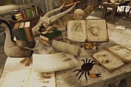 Творчество да Винчи в 3D: в Милане открылась необычная выставка