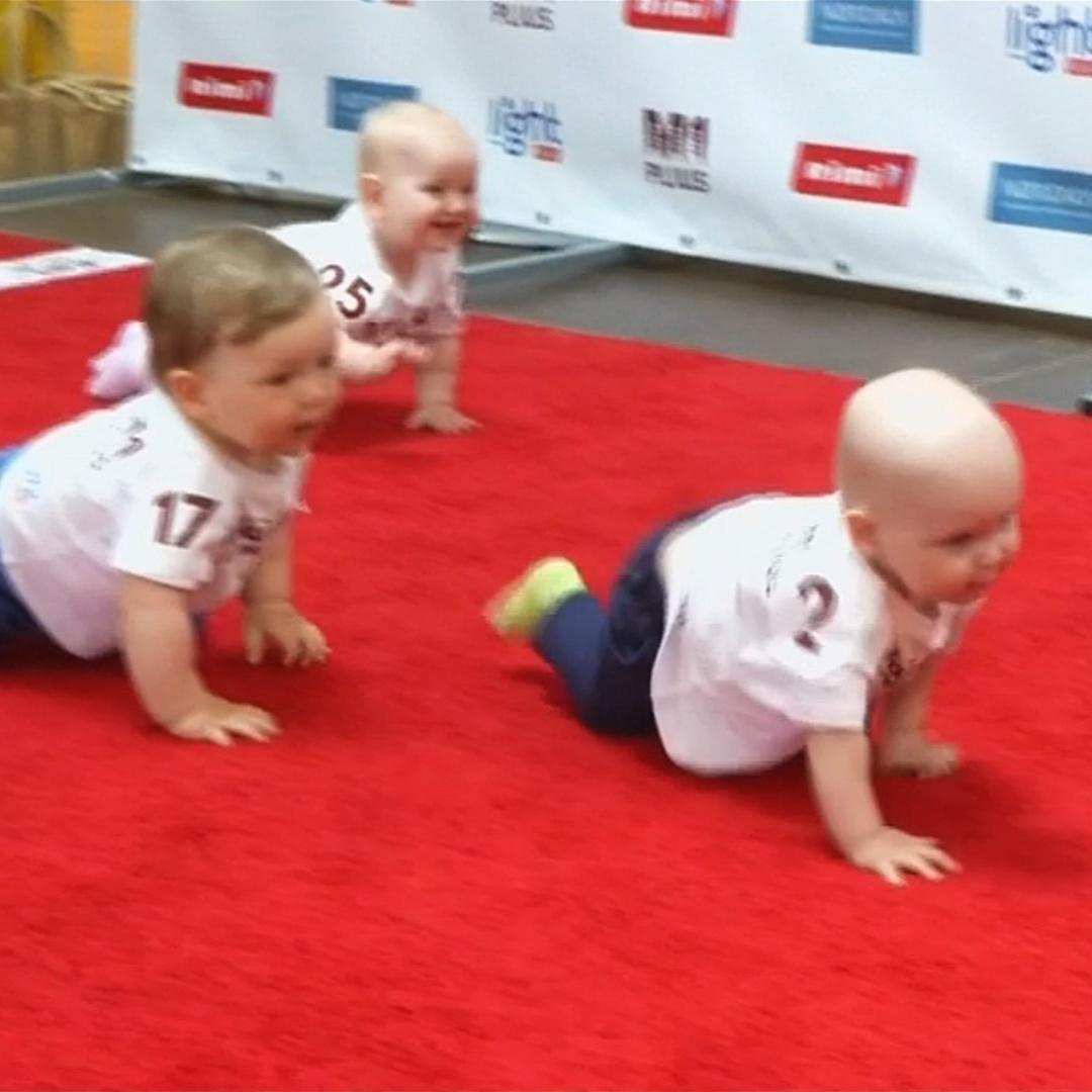 Малыши ползают на скорость