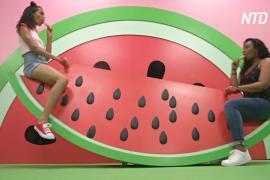 Окунуться в мир фруктов предлагают в лос-анджелесском музее