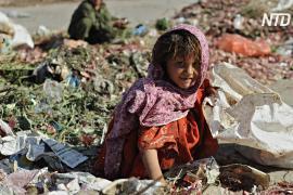 ООН: в мире незаконно используется труд 152 миллионов детей