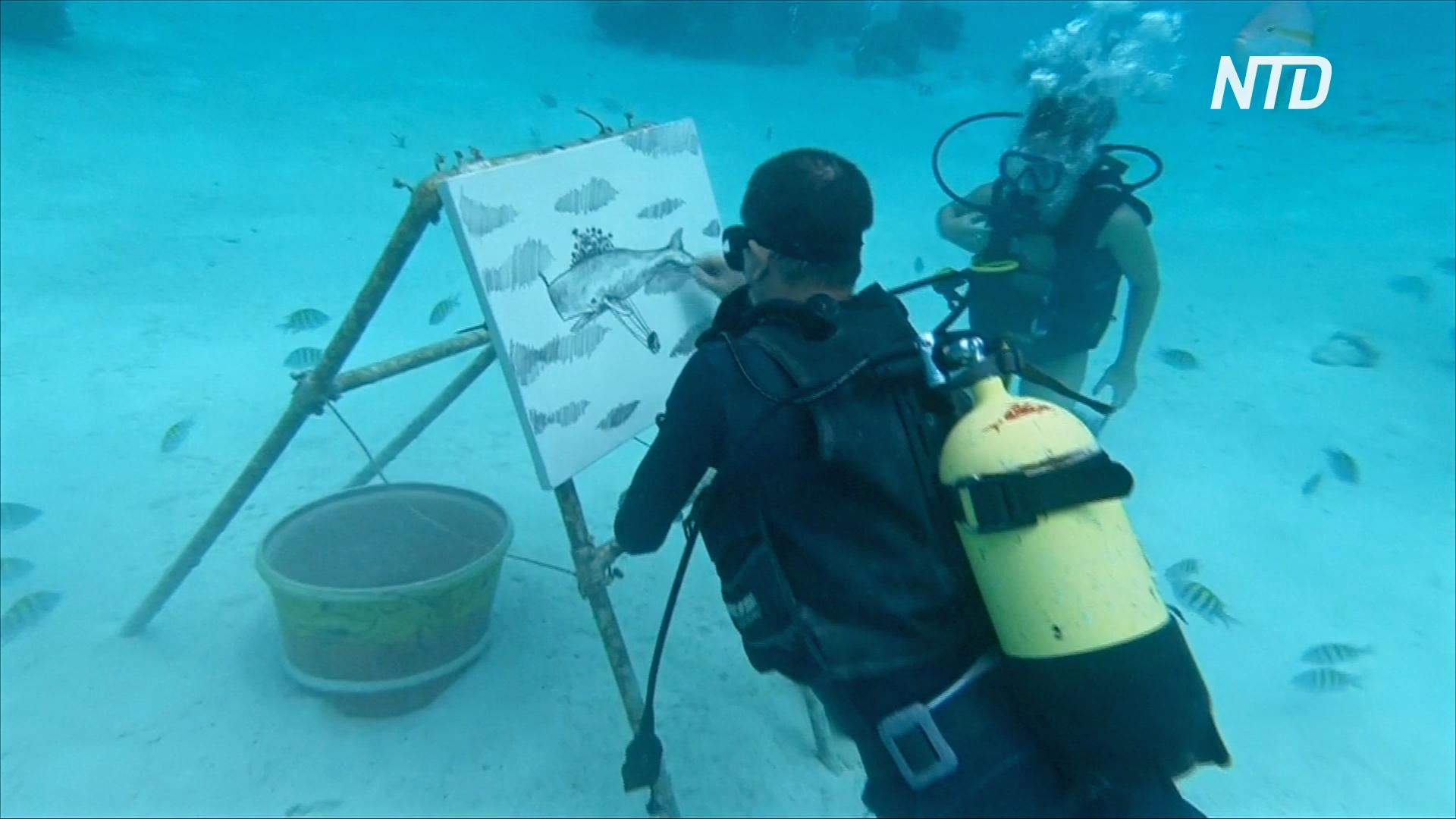 Искусство под водой: кубинец рисует картины на дне океана