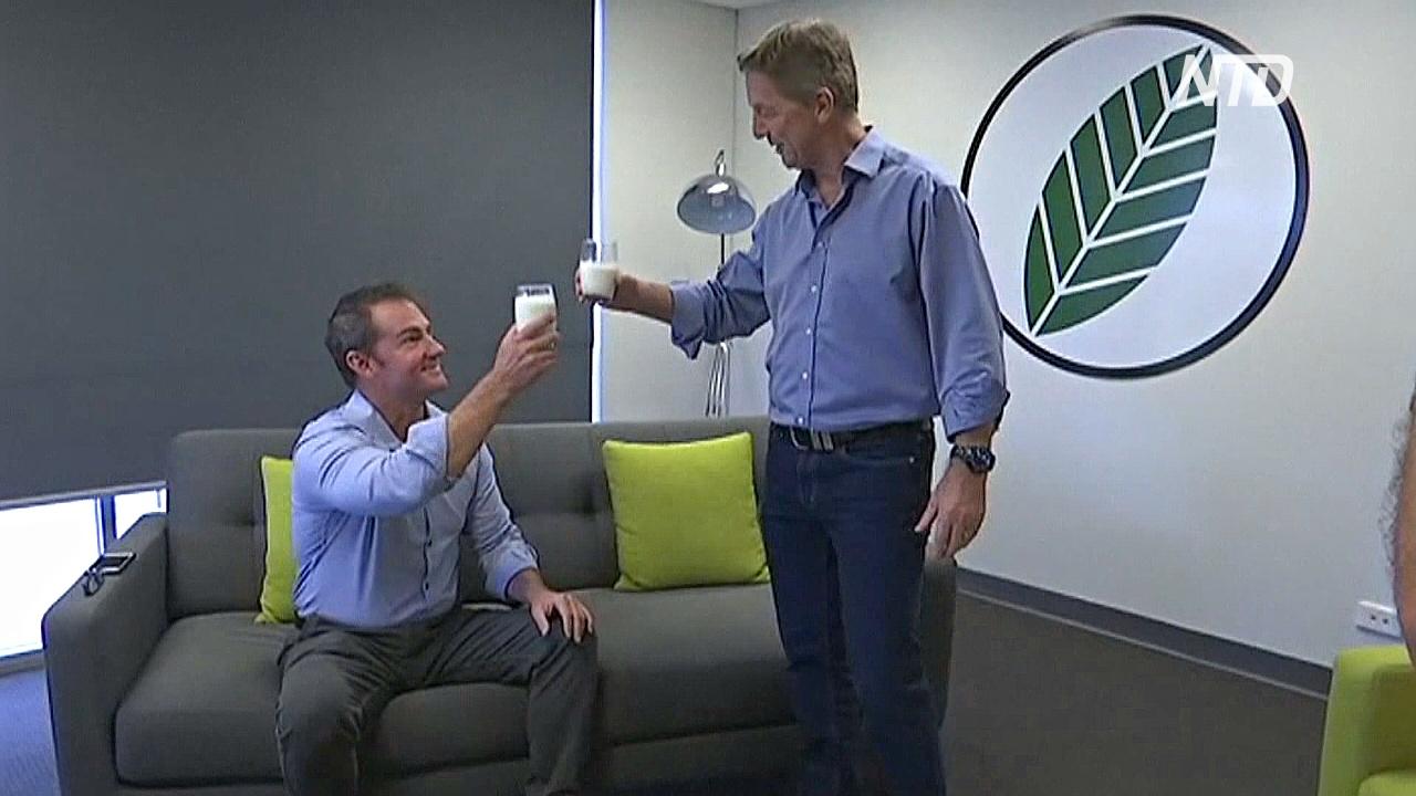 Австралиец изобрёл новый щадящий способ обработки молока