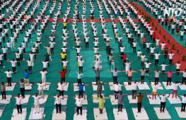 Как отметили Международный день йоги