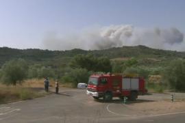 Пожар в Каталонии: сгорело более 3600 га леса