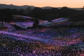 Британский художник оживил калифорнийские холмы десятками тысяч фонариков