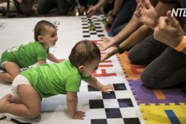 К финишу – на четвереньках: как состязались малыши в подгузниках