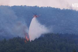 В центральной Греции тушат сильный лесной пожар