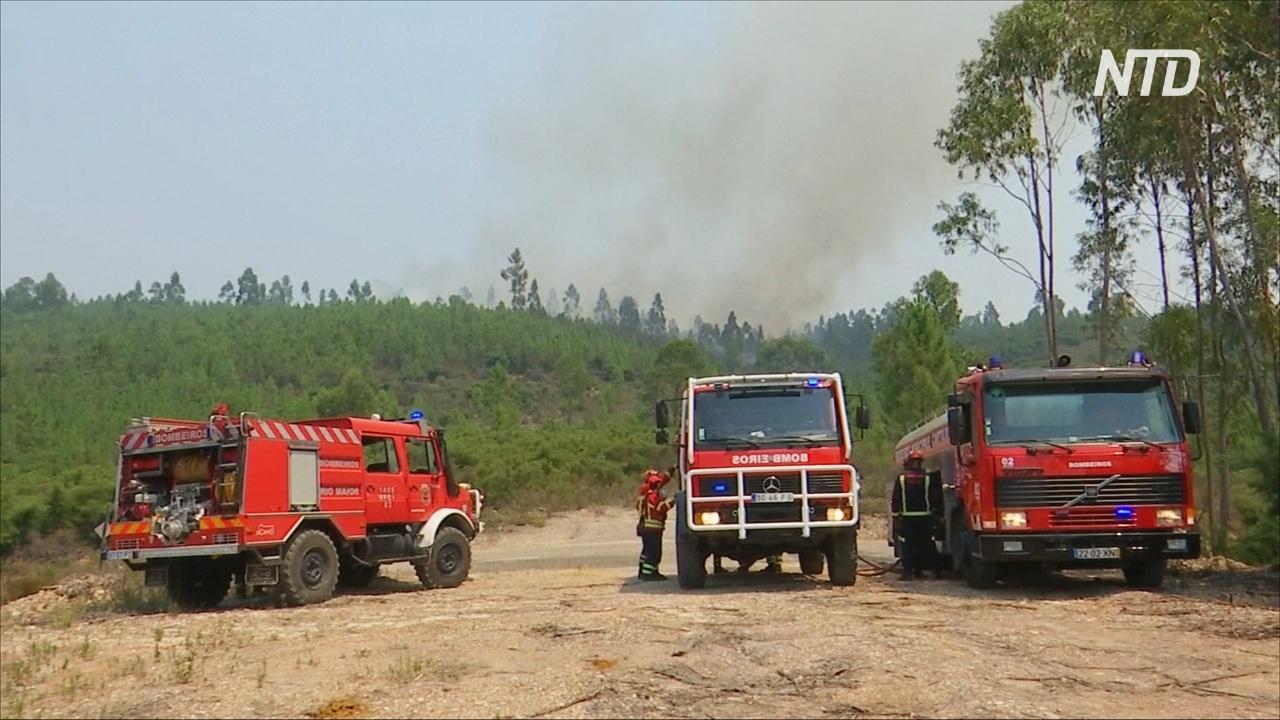 Более 1000 пожарных пытаются потушить пламя в центральной Португалии